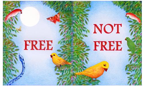 Free / Not Free