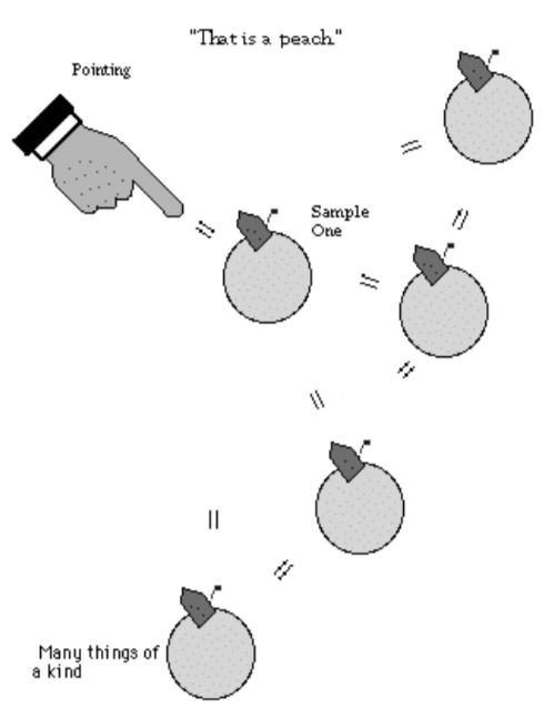 Ilustracion 26