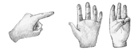 Ilustracion 31