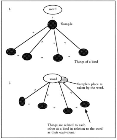 Ilustracion 8